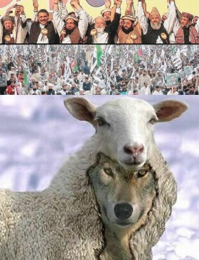 Defece of Pakistan Council Sheep in a Wolf Clothing