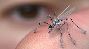 Flying Insect Sized Spy Drones