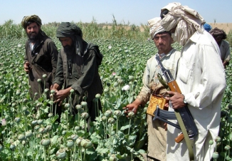 AFGHAN DRUGS