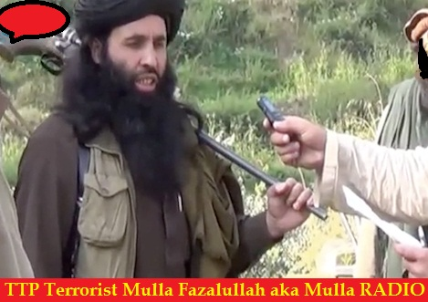 Mulla Fazalullah TTP Comander aka Mullah Radio
