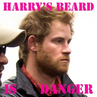Prince Harry's Beard a Danger