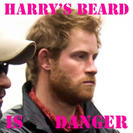 Prince Harry's Beard a Danger
