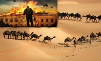 Sinai Desert to Washington US