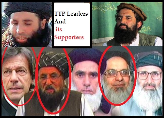 TTP Mulla Fazalullah , Shahid ullah Shahid and Nominees
