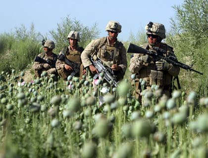 Marines in Poppies