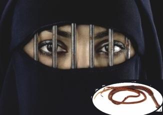Saudi Woman Imprisoned & Lashed